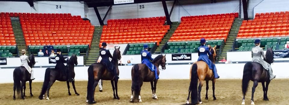VT MORGAN HORSE ASSOCIATION